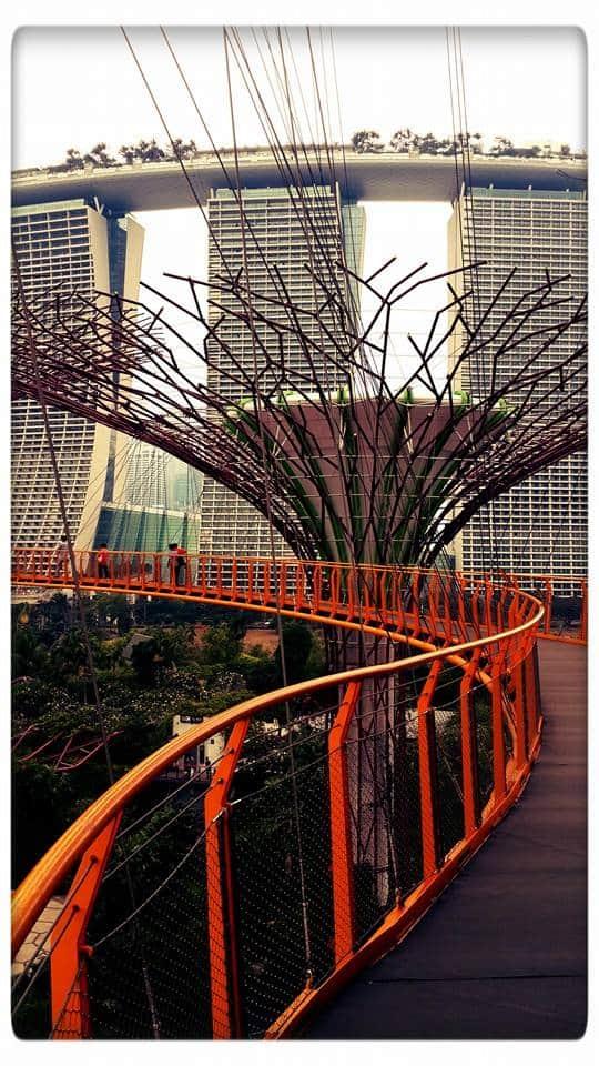 Global, Local, Social - Singapore